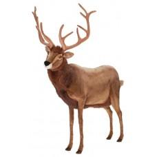 Deer, Male (mechanical)