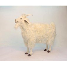 Cashmere Goat (mechanical)