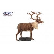 """Reindeer, Nordic With Rock 65"""""""