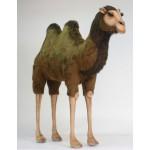 Camel Extra Large
