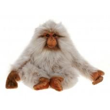 Japan Monkey