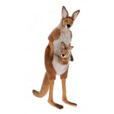Kangaroo Life Size