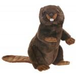Beaver Upright