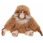 Salem Monkey Baby