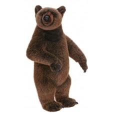 Yogi Grizzly