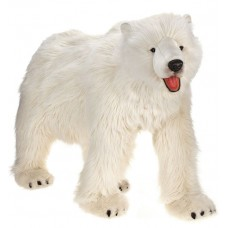 Polar Bear Life Size On All Four Feet