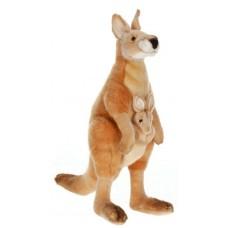 Kangaroo Mama And Joey