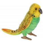 Parakeet Budgie Yellow And Green