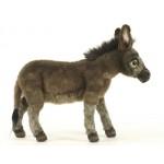 Donkey Medium