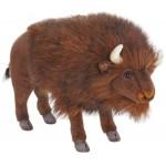 Buffalo Medium
