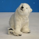 Polar Bear Cub Seated