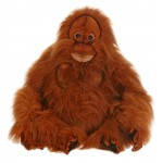 Clyde Orangutan