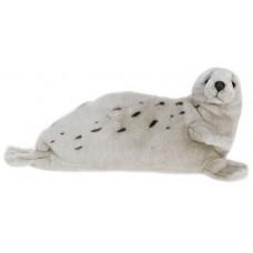 Grey Harp Seal