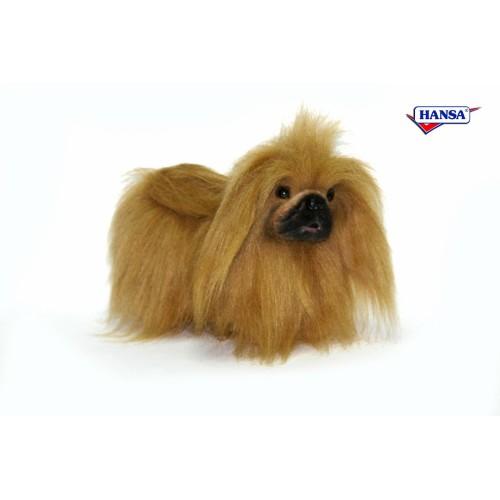 Toy Size Dogs : Pekinese toy size dog