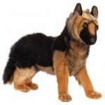 German Shepherd Puppy