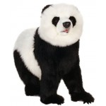 Panda Bear On All Four Feet