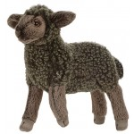 Black Little Lamb