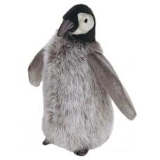 Penguin Chick Medium