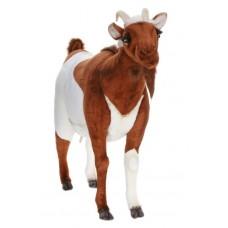 "Goat Life Size 40""L"