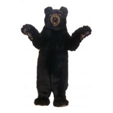 Black Honey Bear