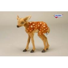 Bambi Kid