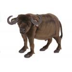Water Buffalo Large