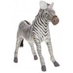 Grevy's Zebra Large