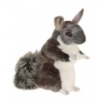 Chauncey Chinchilla