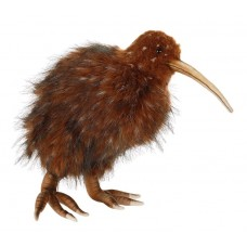 Brown New Zealand Kiwi