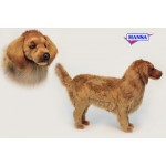 Golden Retriever Life Size Stool