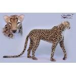 Cheetah Jacqard Standing