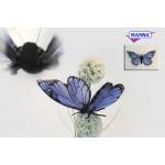 """Blue Butterfly 5.5""""W"""