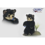 Black Bear Cub Cuddly