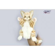 Cat Puppet Ginger